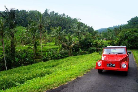 Jatiluwih - Bali - Indonésie